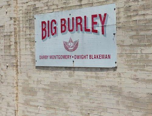 Big Burley Tobacco
